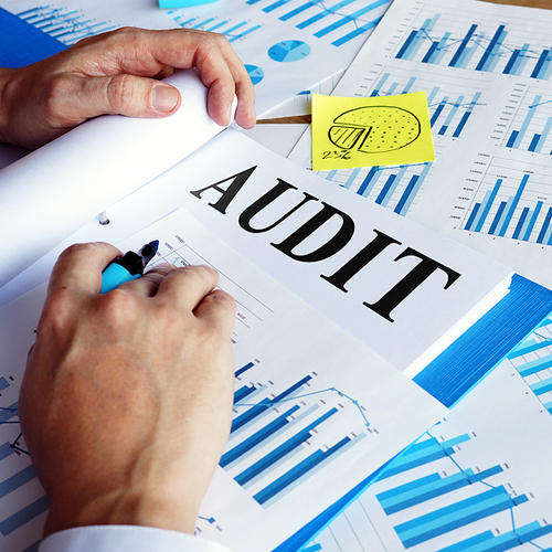 CRA Audit Documents